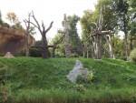 Pongoland (Zoo Leipzig)
