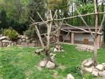 Anlage für Stachelschweine und Waschbären (Tierpark Hirschfeld)