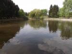 Teich (Tierpark Hirschfeld)