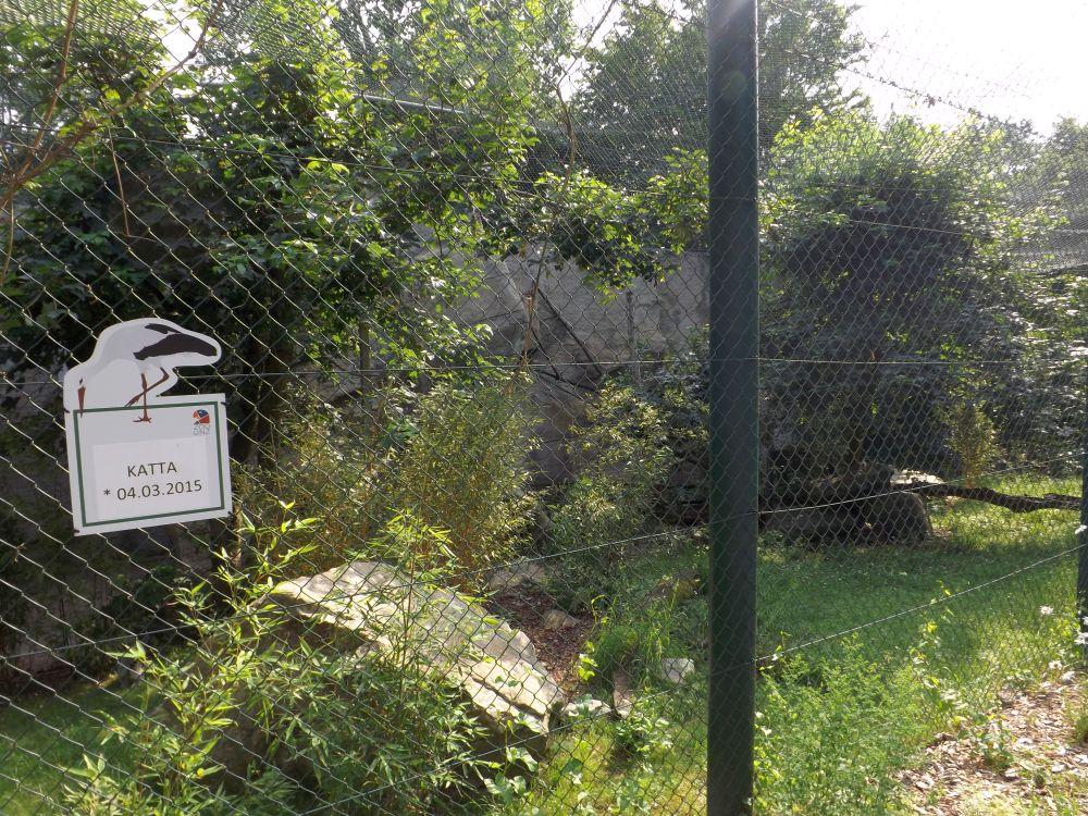 Kattaanlage (Zoo Linz)