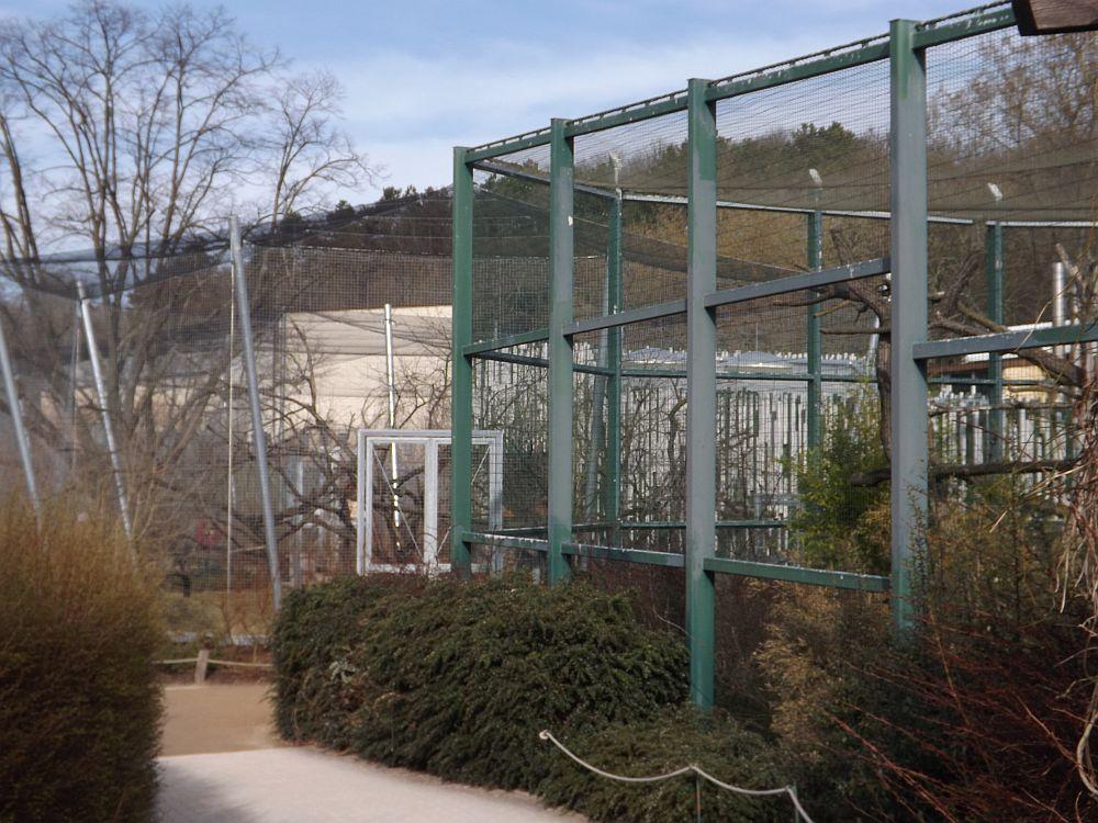 Lemurenwald (Thüringer Zoopark)