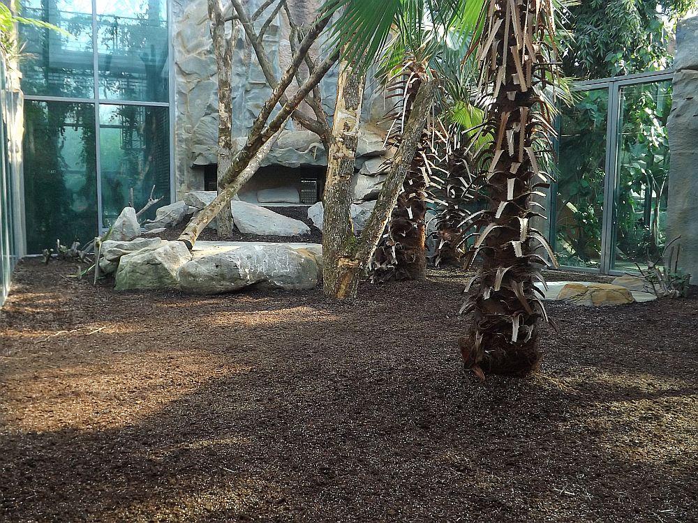 Menschenaffenanlage (Tierpark Hellabrunn)