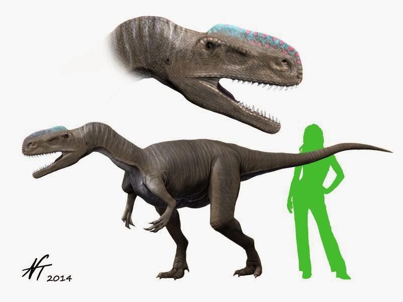 Monolophosaurus jiangi (© N. Tamura)