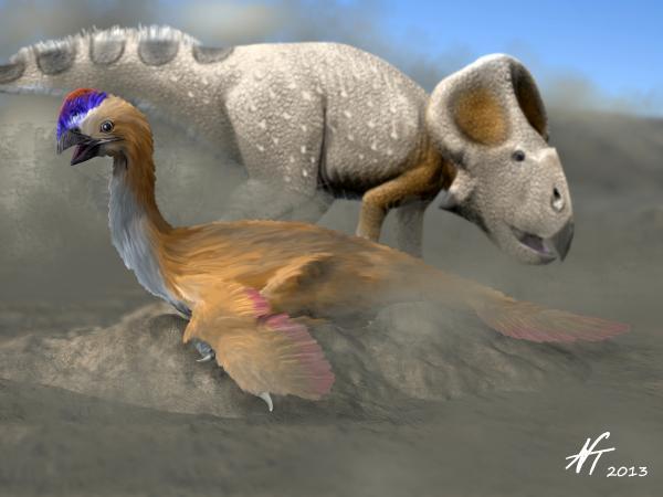 Oviraptor philoceratops,im Hintergrund ein Protoceratops (© N. Tamura)
