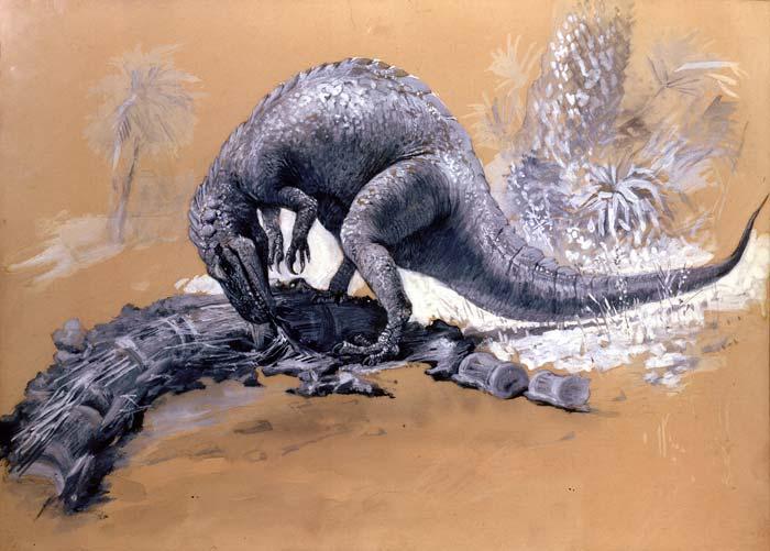 Allosaurus (Charles R. Knight)