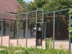 Straußenstall (Zoo Bratislava)