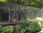 Volieren (Zoo Bratislava)
