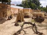 Anlage für Erdmännchen und Stachelschweine (Zoo Hoyerswerda)
