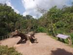 Kattaanlage (Zoo Prag)