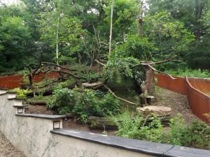 Katzenbärenanlage (Zoopark Chomutov)