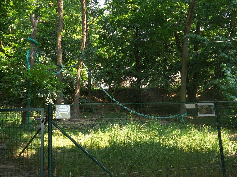 Nasenbärenanlage (Zoo Brno)