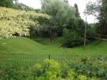 Vogelwiese (Tiergarten und Reiterhof Walding)