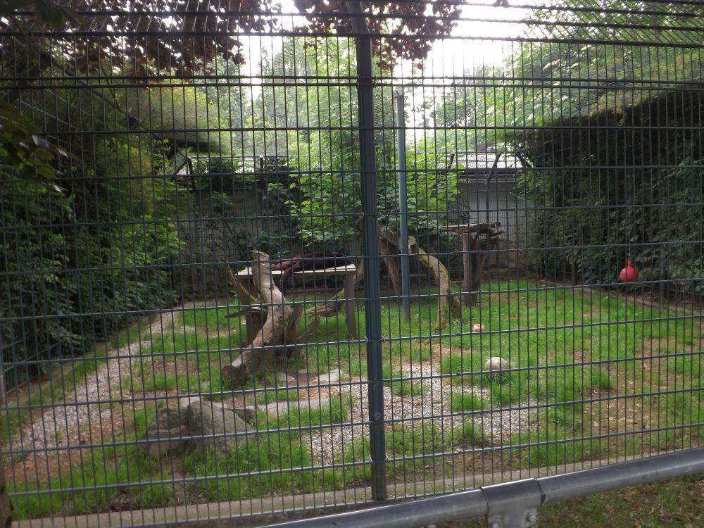 Leopardenanlage (Tiergarten und Reiterhof Walding)