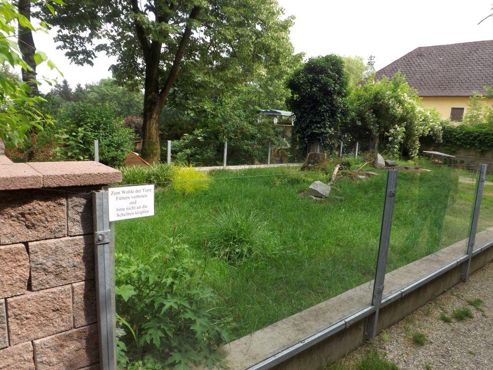 Präriehundanlage (Tiergarten und Reiterhof Walding)