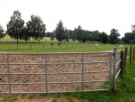 Pferdekoppel (Tiergarten und Reiterhof Walding)