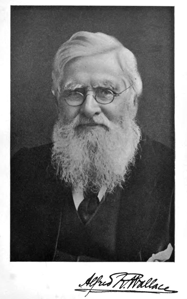A. R. Wallace (1908)