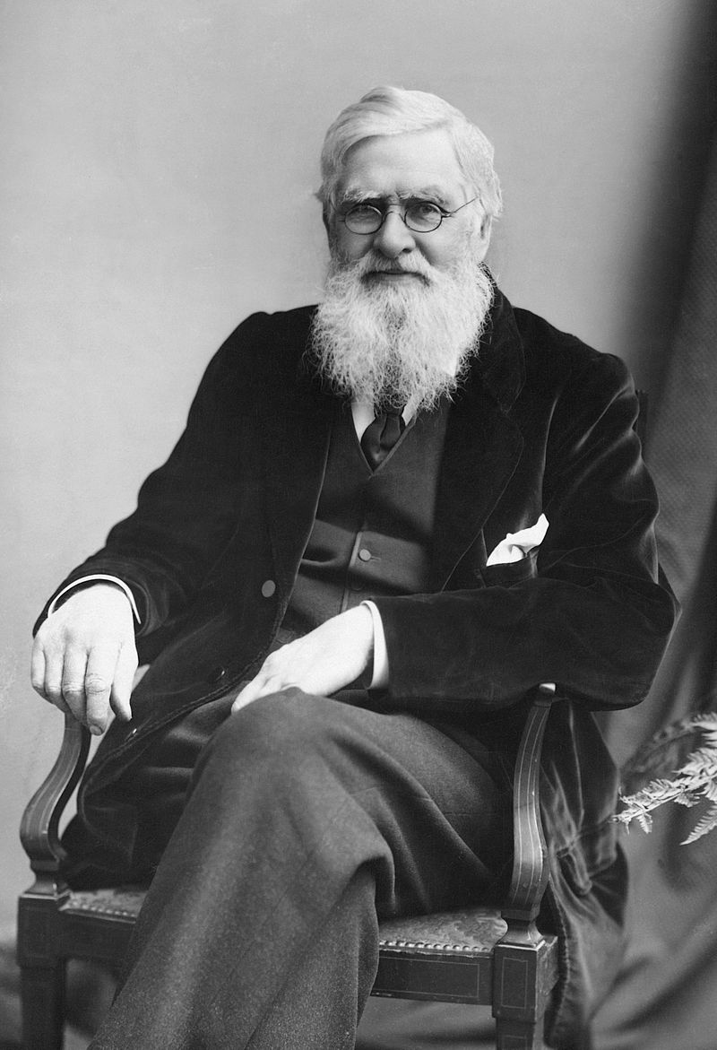 Alfred Russel Wallace (London Stereoscopic & Photographic Company)
