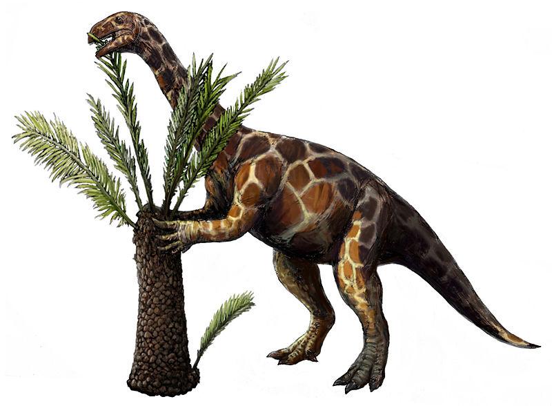Unaysaurus tolentinoi (Michael B. H.)
