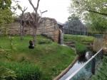 Affenhaus mit Gorillaanlage im Vordergrund (Zoo Berlin)