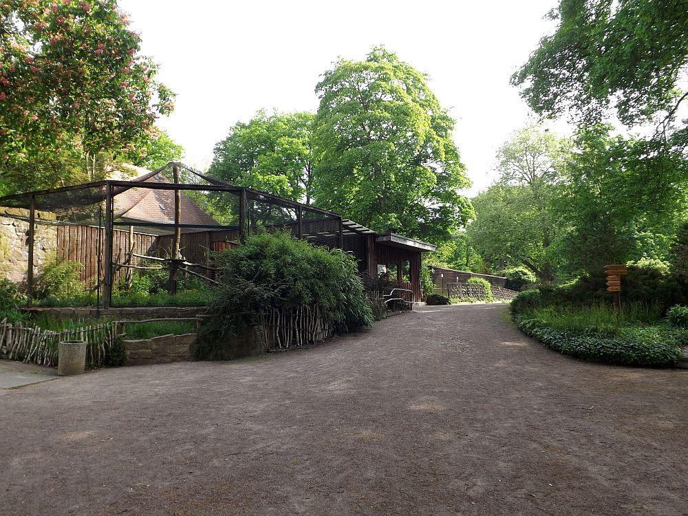 Tierpark Dessau