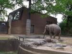 Elefantenhaus (Zoo Berlin)