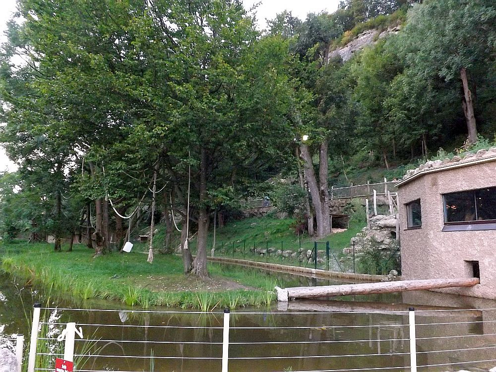 Gibbonanlage (Zoo Salzburg)