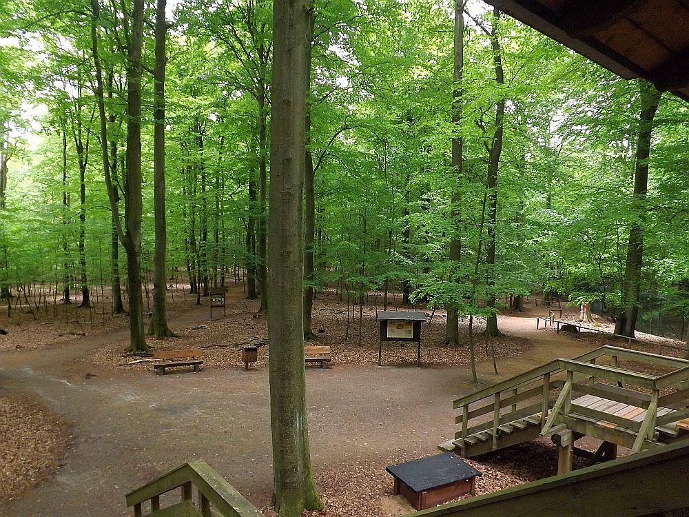 Tierpark Kunsterspring