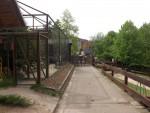 Buntfalkenvoliere und Streichelgehege (Zoo der Minis)