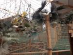 Dinodrom (Gaiazoo Kerkrade)