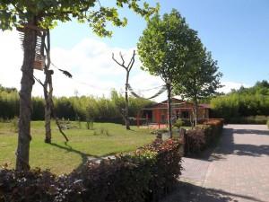 Eingang mit der Anlage der Katzenbären (Zooparc Overloon)