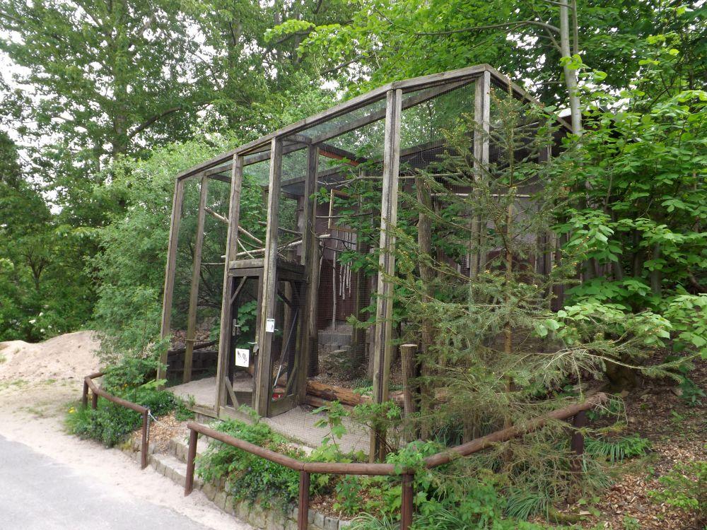 Eulenvoliere (Zoo der Minis)
