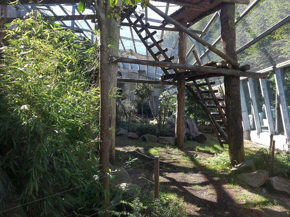 Gorillaanlage (Ouwehands Dierenpark)