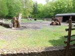 Kamelanlage (Zoo Eberswalde)