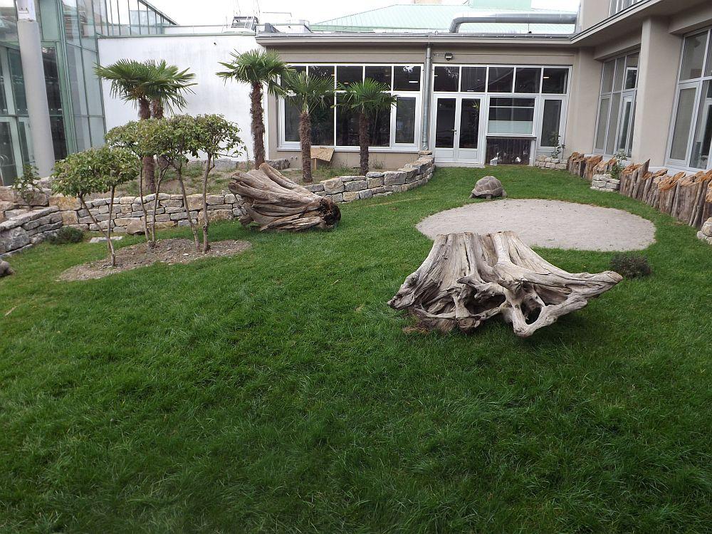 Schildkrötenanlage, außen (Zoo Karlsruhe)