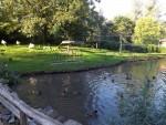 Stelzvogelanlage (Euregiozoo Aachen)