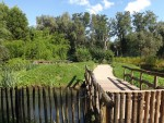 Storchenanlage (Zooparc Overloon)