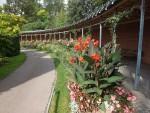 Im Maurischen Garten (Wilhelma Stuttgart)