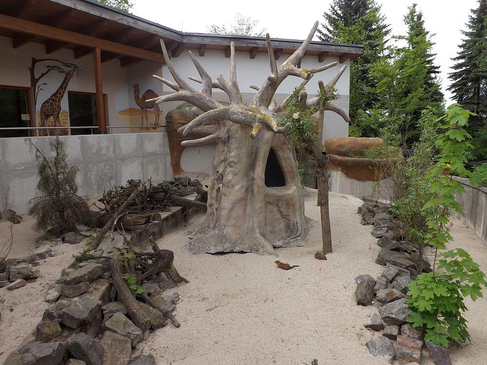 Zwergmangustenanlage (Zoo der Minis)