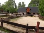 Zwergrinderanlage (Zoo der Minis)