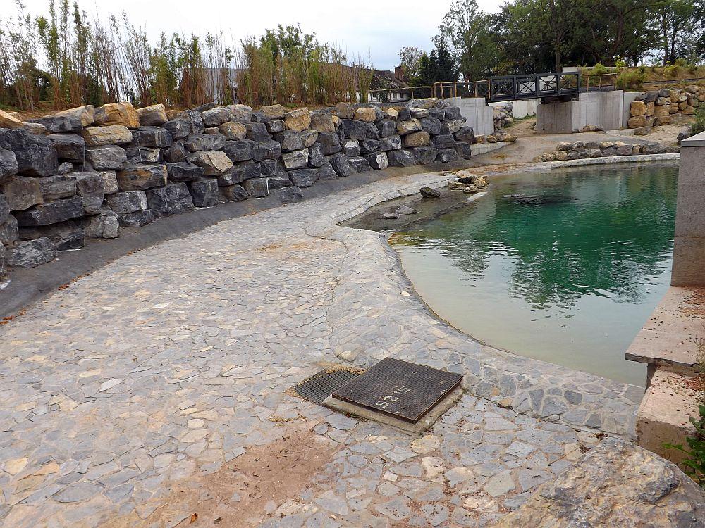 Flusspferdanlage (Pairi Daiza)