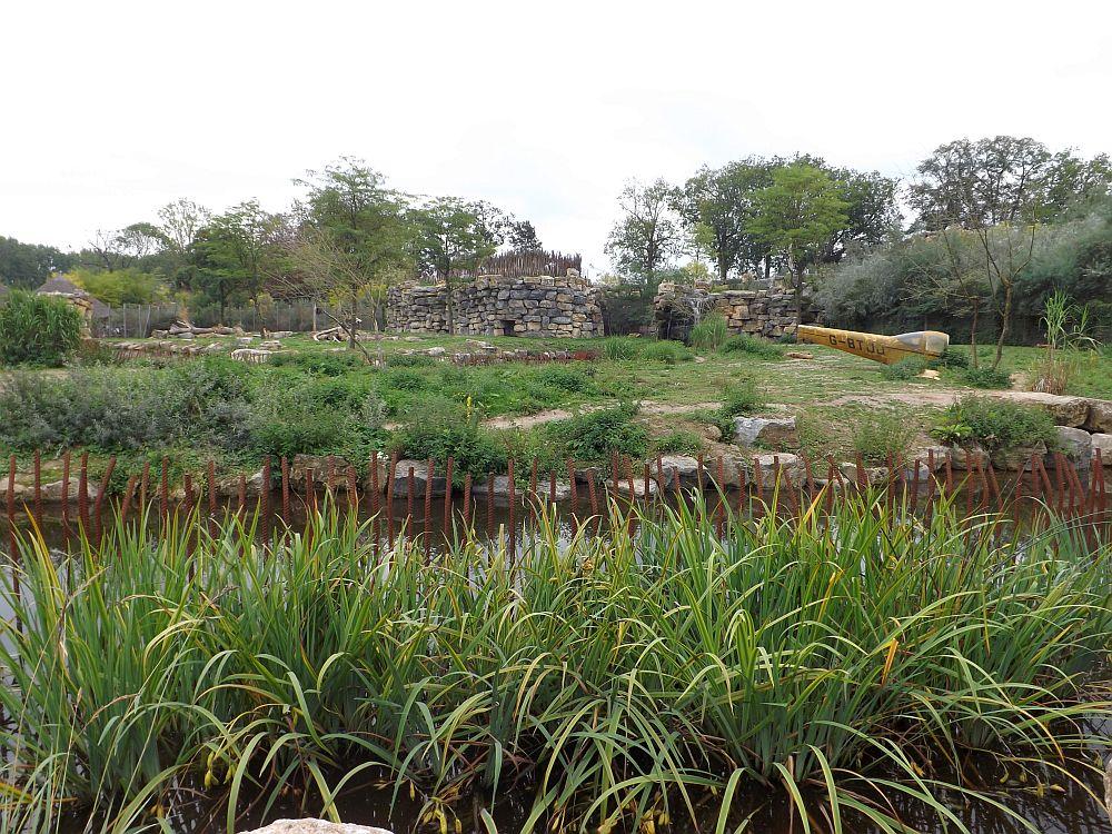 Hyänenanlage (Pairi Daiza)