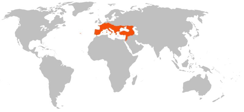 Verbreitung des Großen Mausohrs