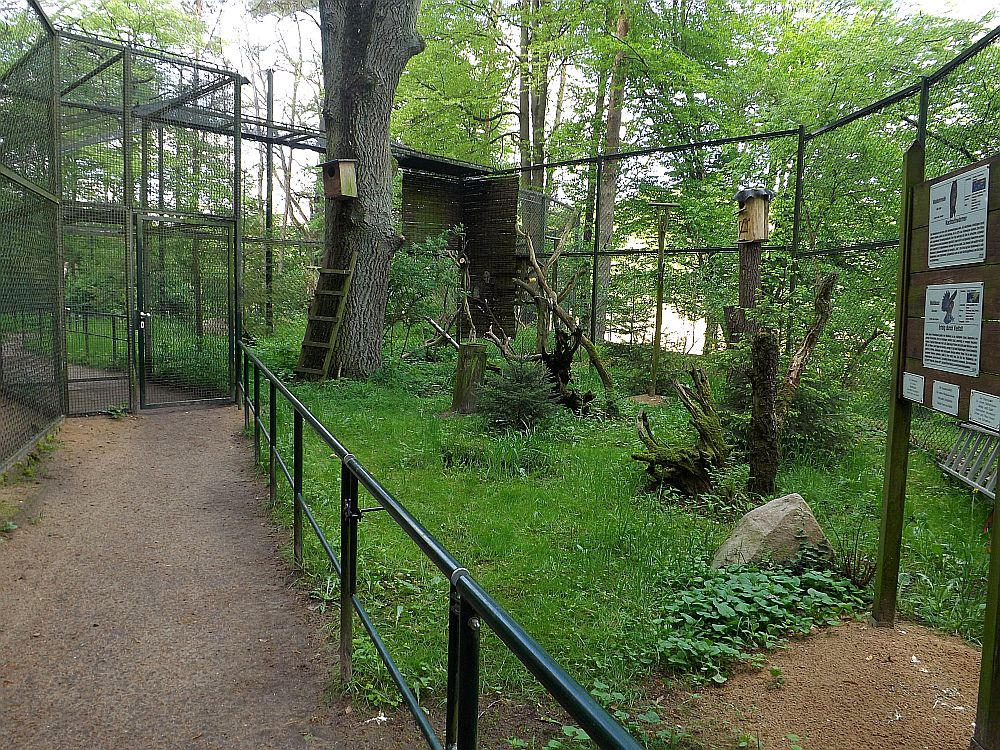 Eulenvoliere (Tierpark Kunsterspring)