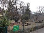 Kapuzineraffenanlage (Zoo Augsburg)