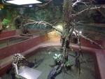 Krokodilhaus (Erlebnispark Meeresaquarium Zella-Mehlis)