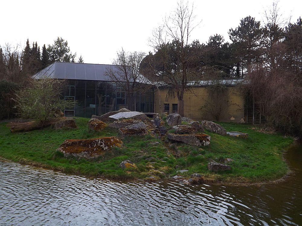Löwenanlage (Zoo Augsburg)