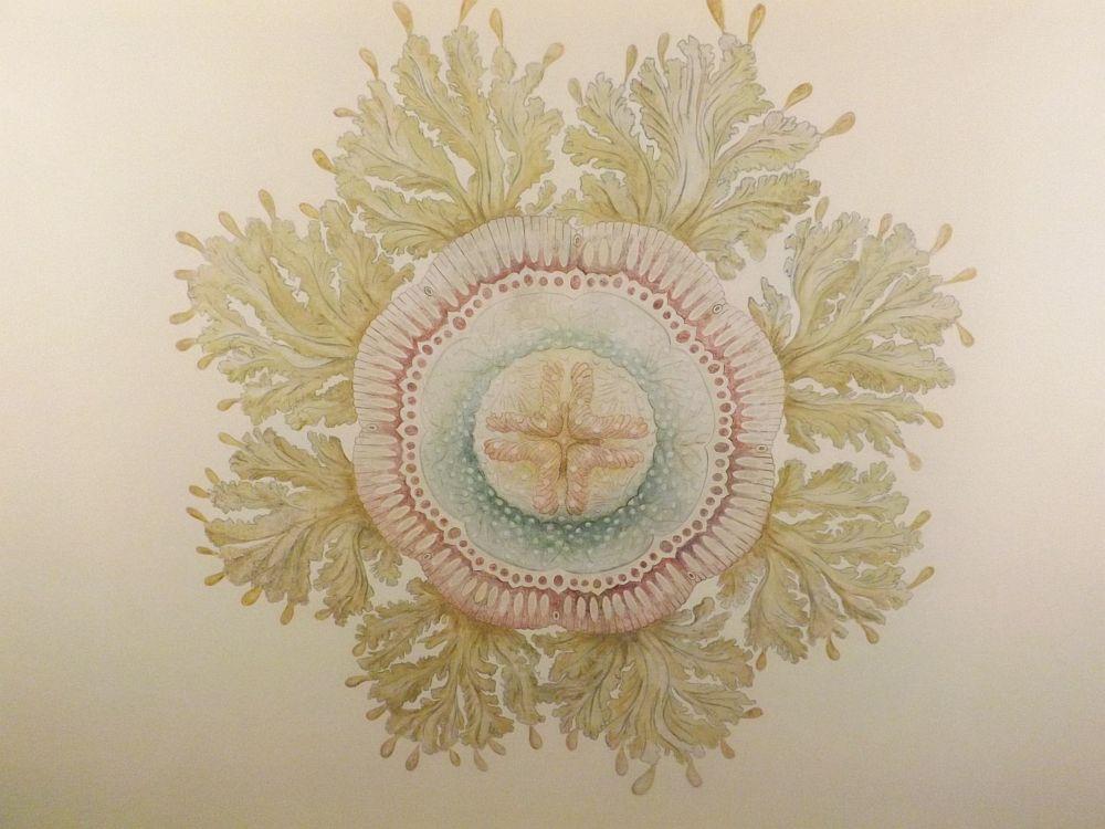 Deckengemälde im Medusensaal (Phyletisches Museum)