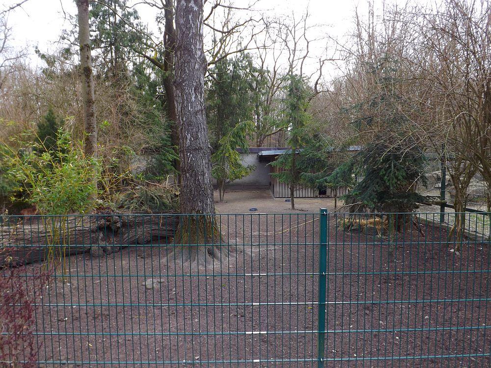 Muntjakanlage (Zoo Augsburg)