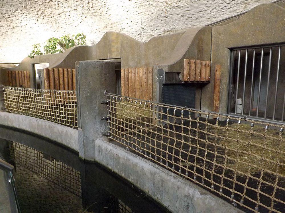 Innenansicht Nashornhaus (Tierpark Hellabrunn)