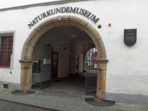 Naturkundemuseum Erfurt